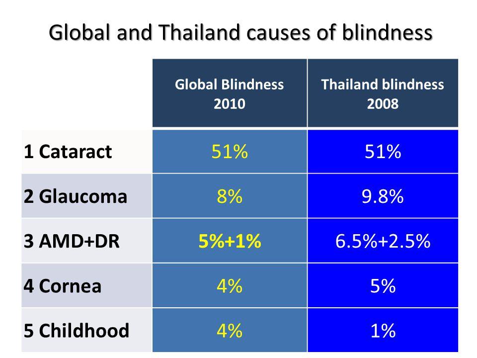 1983 1987 1994 2008 2013 Blindness Prevalence 1.14% 0.58% 0.31% 0.59% 0.60% Cataract 47.3% 71.3% 74.7% 51.6% 69.7% Surgical Backlog 270,000 220,000 134,000 98,336 70,071 Thailand National Eye Survey 1st 2nd 3rd 4th 5th Vision 2020 Goal : Blindness Prevalence 0.59%  0.50%
