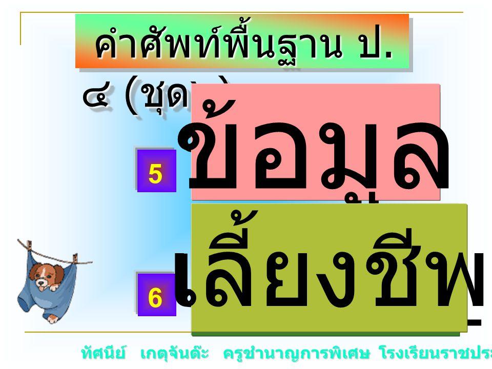 ทัศนีย์ เกตุจันต๊ะ ครูชำนาญการพิเศษ โรงเรียนราชประชานุเคราะห์ ๑๕ คำศัพท์พื้นฐาน ป. ๔ ( ชุด๖ ) คำศัพท์พื้นฐาน ป. ๔ ( ชุด๖ ) ข้อมู _ เลี้ยงชี _ 5 6 ข้อม