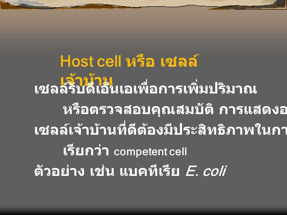 Host cell หรือ เซลล์ เจ้าบ้าน เซลล์รับดีเอ็นเอเพื่อการเพิ่มปริมาณ หรือตรวจสอบคุณสมบัติ การแสดงออกของยีน เซลล์เจ้าบ้านที่ดีต้องมีประสิทธิภาพในการรับดีเ
