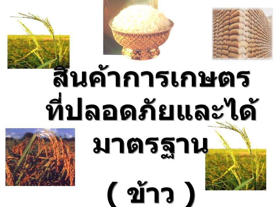 สินค้าการเกษตร ที่ปลอดภัยและได้ มาตรฐาน ( ข้าว ) สินค้าการเกษตร ที่ปลอดภัยและได้ มาตรฐาน ( ข้าว )