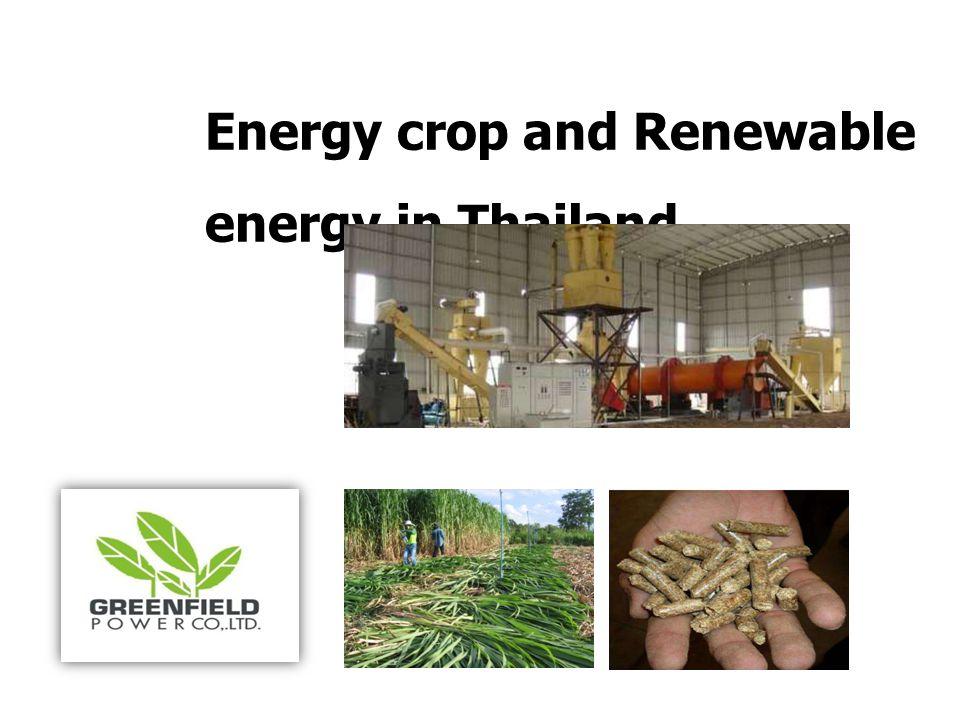 วัตถุประ สงค์  ส่งเสริมอาชีพให้กับสมาชิกและครอบครัวเกษตรกร  จัดตลาดรับซื้อผลผลิตพืชพลังงาน ราคาประกันและ เป็นธรรม  พัฒนาคุณภาพชีวิตของสมาชิกและครอบครัว  ส่งเสริมการร่วมกลุ่มเศรษฐกิจชุมชน สร้างความมั่นคง และมีรายได้ที่ยั่งยืน