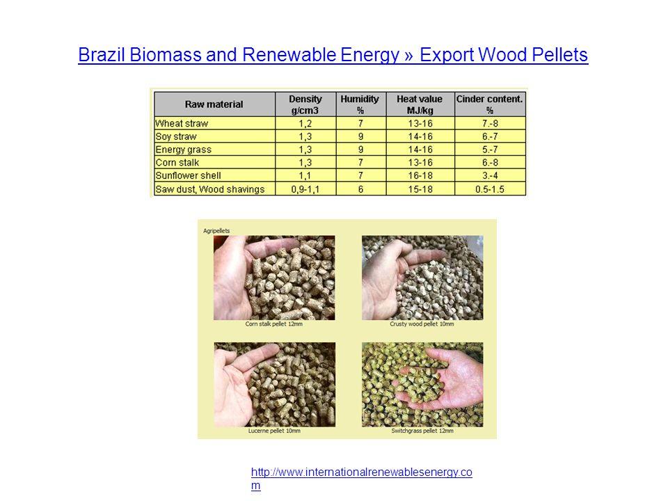 http://www.internationalrenewablesenergy.co m Brazil Biomass and Renewable Energy » Export Wood Pellets