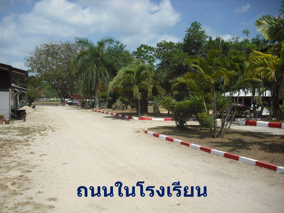 ถนนในโรงเรียน