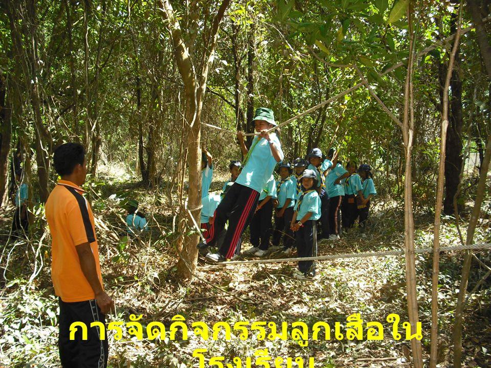 การจัดกิจกรรมลูกเสือใน โรงเรียน