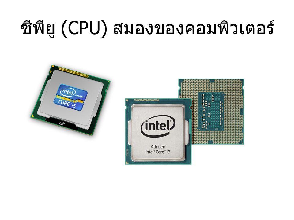 CPU หรือ Central Processing Unit คือหัวใจหลัก ในการประมวลผล ของคอมพิวเตอร์ คอมพิวเตอร์จึงขาดซีพียุไม่ได้ ซีพียู เป็นตัวควบคุมการทำงานของอุปกรณ์ต่างๆ ไม่ ว่าจะเป็นอุปกรณ์ที่อยู่ในคอมพิวเตอร์ หรืออุปกรณ์ ต่อพ่วงที่ต่อร่วมกับคอมพิวเตอร์