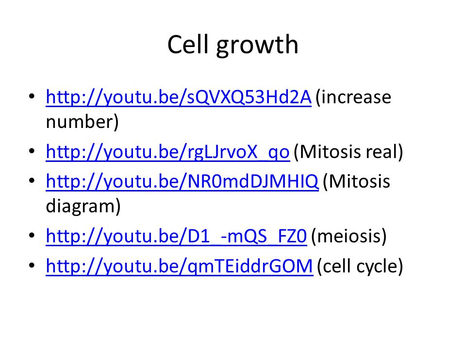 Cell differentiation http://youtu.be/IxFwenTA-gQ