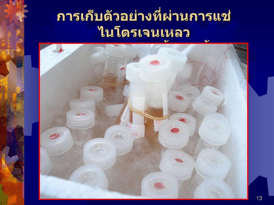 13 การเก็บตัวอย่างที่ผ่านการแช่ ไนโตรเจนเหลว ในของผสมระหว่างน้ำและน้ำแข็ง