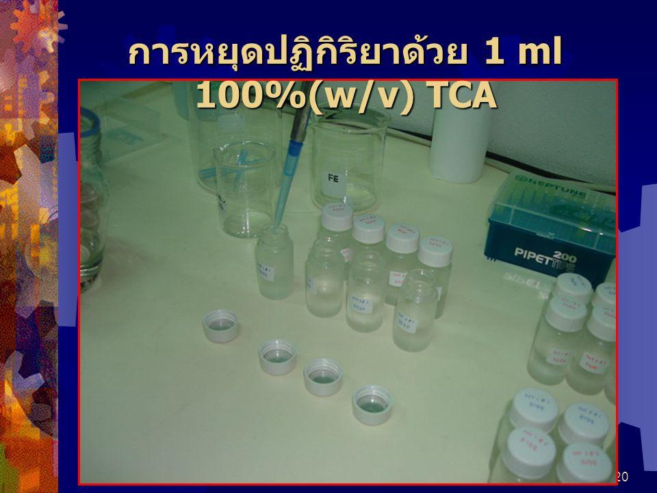 20 การหยุดปฏิกิริยาด้วย 1 ml 100%(w/v) TCA