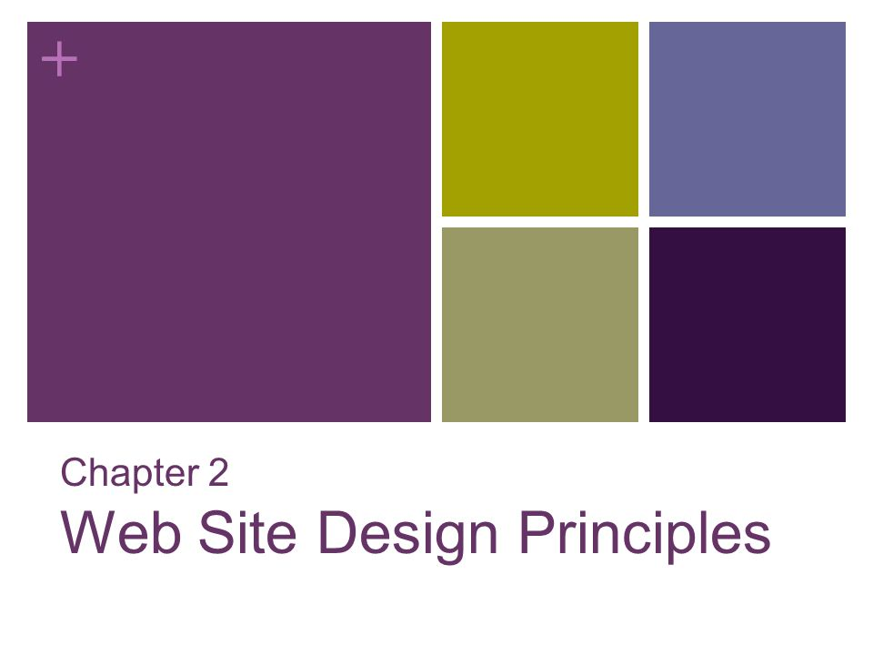 + Chapter 2 Web Site Design Principles