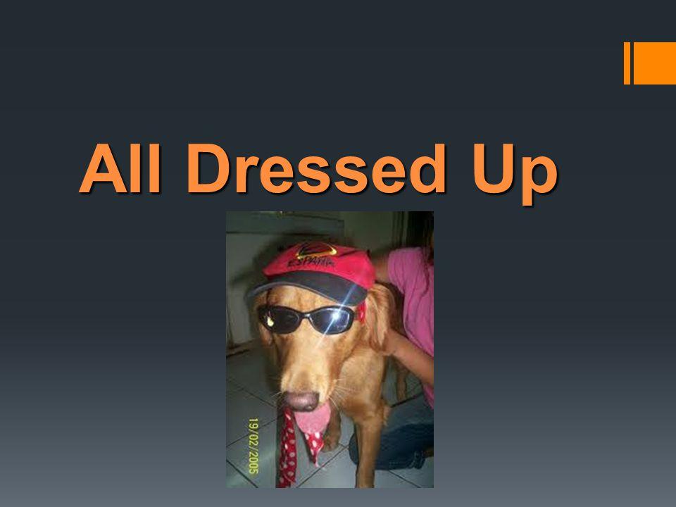  ตรวจสอบรูปภาพใน Task 2-3  1AndreaA  - white skirt  - striped blouse  - short, curly hair  2RobertD  - heavy-set  - plaid shirt