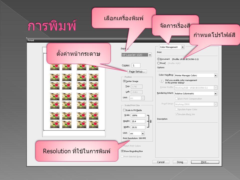 เลือกเครื่องพิมพ์ ตั้งค่าหน้ากระดาษ Resolution ที่ใช้ในการพิมพ์ จัดการเรื่องสี กำหนดโปรไฟล์สี