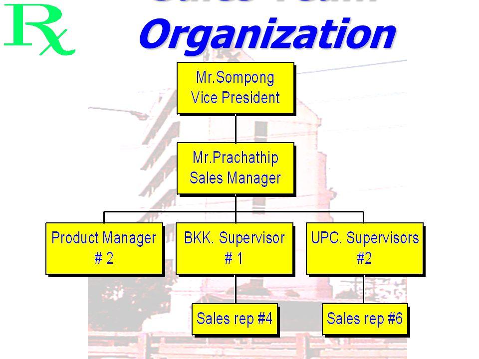 Sales Team Organization