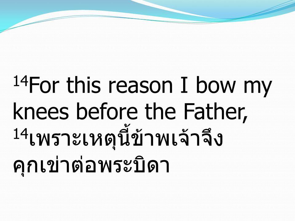 14 For this reason I bow my knees before the Father, 14 เพราะเหตุนี้ข้าพเจ้าจึง คุกเข่าต่อพระบิดา
