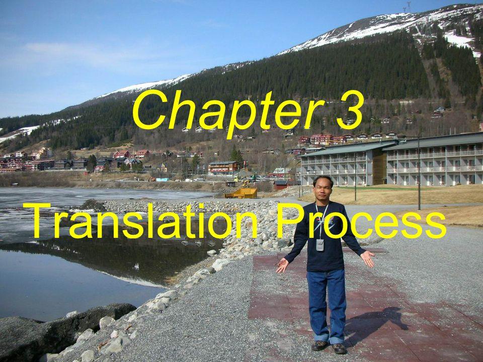 Translation Process Chapter 3