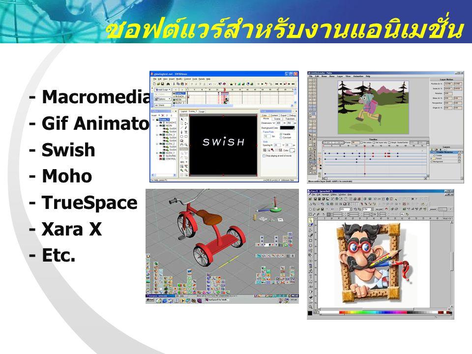 ซอฟต์แวร์สำหรับงานแอนิเมชั่น - Macromedia Flash - Gif Animator - Swish - Moho - TrueSpace - Xara X - Etc.