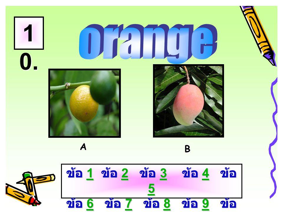 AB 9. ข้อ 1 ข้อ 2 ข้อ 3 ข้อ 4 ข้อ 5 ข้อ 6 ข้อ 7 ข้อ 8 ข้อ 9 ข้อ 10 1234 56789 101234 56789 10