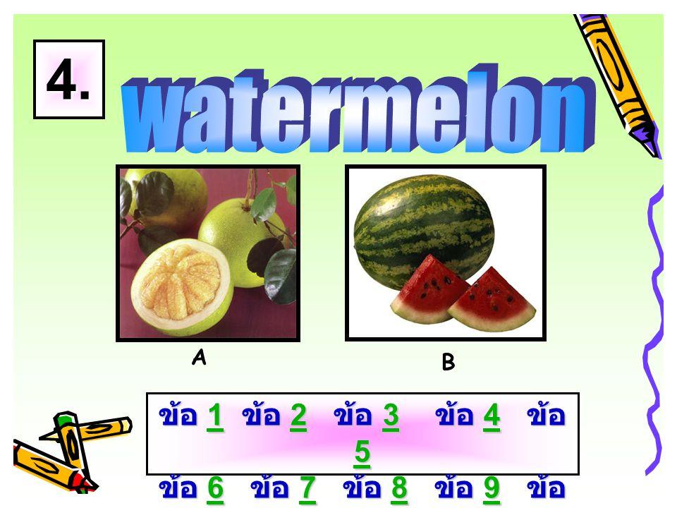 A B 3. ข้อ 1 ข้อ 2 ข้อ 3 ข้อ 4 ข้อ 5 ข้อ 6 ข้อ 7 ข้อ 8 ข้อ 9 ข้อ 10 1234 56789 101234 56789 10