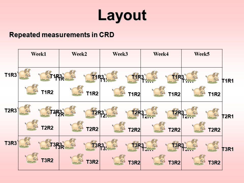 Layout Repeated measurements in CRD Week1Week2Week3Week4Week5 T1R1 T1R2 T1R3 T2R1 T2R2 T2R3 T3R1 T3R2 T3R3 T1R1 T1R2 T1R3 T2R1 T2R2 T2R3 T3R1 T3R2 T3R
