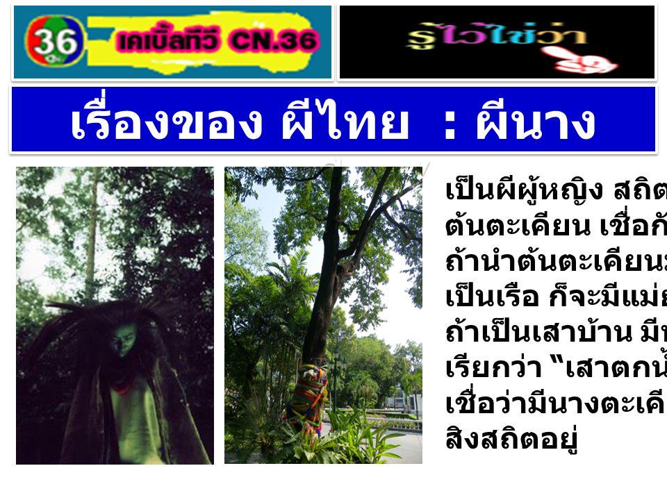 เรื่องของ ผีไทย : ผีนาง ตะเคียน ' เป็นผีผู้หญิง สถิตอยู่ที่ ต้นตะเคียน เชื่อกันว่า ถ้านำต้นตะเคียนมาทำ เป็นเรือ ก็จะมีแม่ย่านาง ถ้าเป็นเสาบ้าน มีน้ำมั