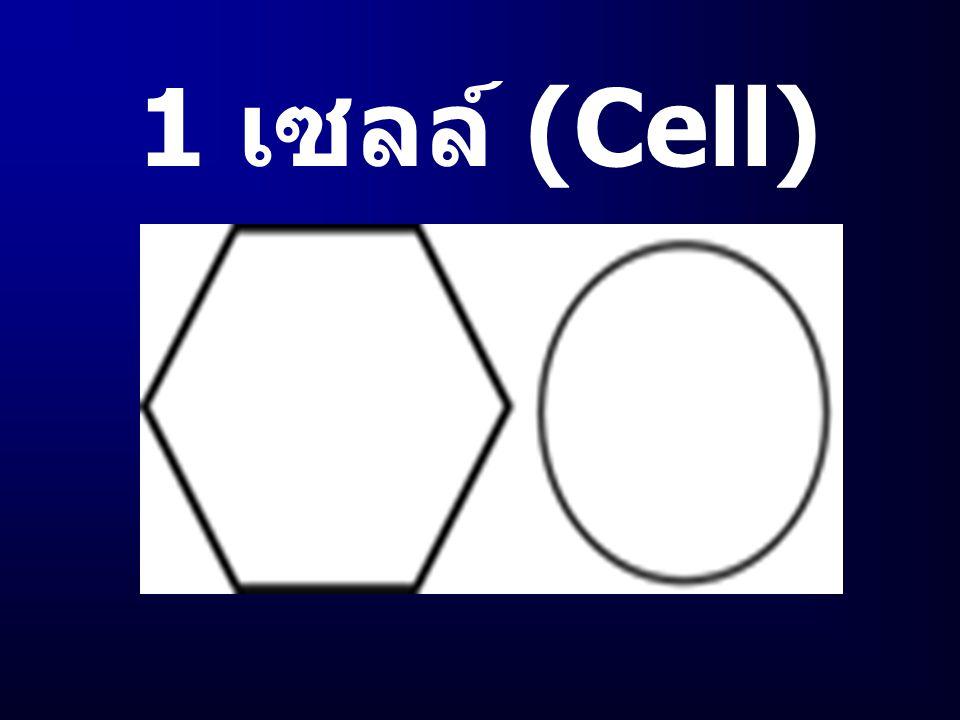 วิทยุ โทรศัพท์ เคลื่อนที ( MobileTelephone ) ( MobileTelephone )