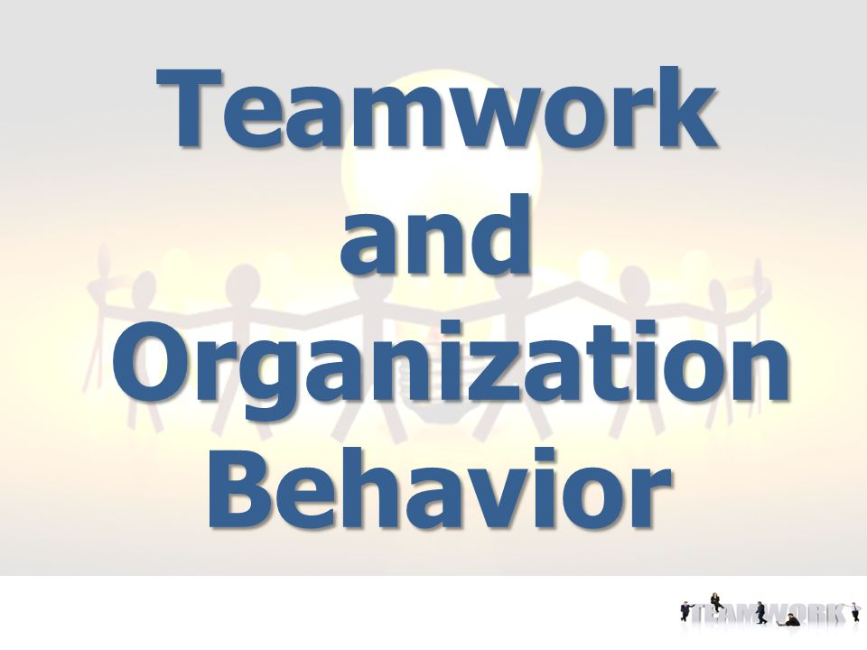 Teamwork and Organization Behavior