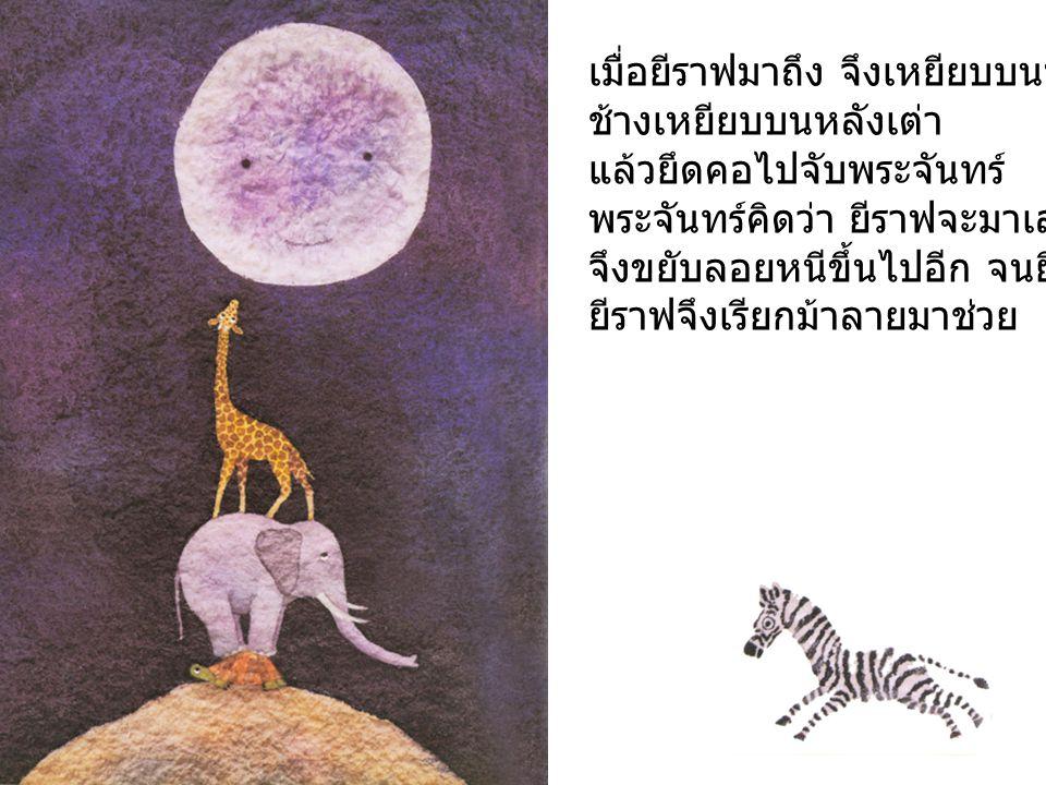 เมื่อม้าลายมาถึง จึงเหยียบบนหลังยีราฟ ยีราฟเหยียบบนหลังช้าง ช้างเหยียบบน หลังเต่า แล้วเอื้อมไปจับพระจันทร์ พระจันทร์คิดว่า ม้าลายจะมาเล่นไล่จับ จึงขยับลอยหนีขึ้นไปอีก จนม้าลายจับไม่ถึง ม้าลายจึงเรียกสิงโตมาช่วย