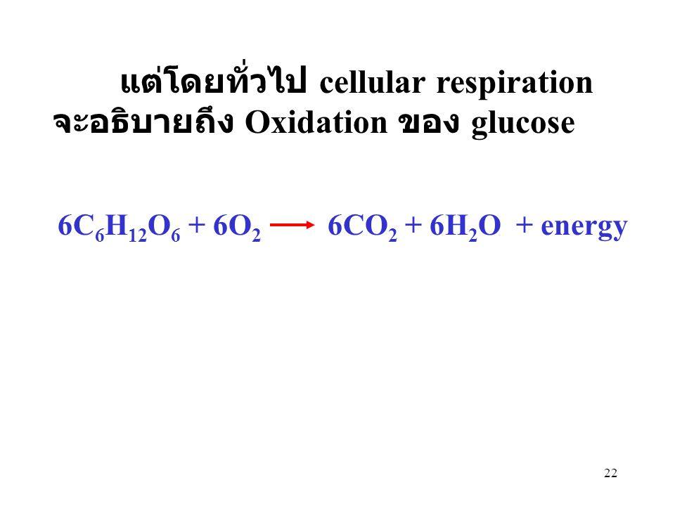 22 แต่โดยทั่วไป cellular respiration จะอธิบายถึง Oxidation ของ glucose 6C 6 H 12 O 6 + 6O 2 6CO 2 + 6H 2 O + energy