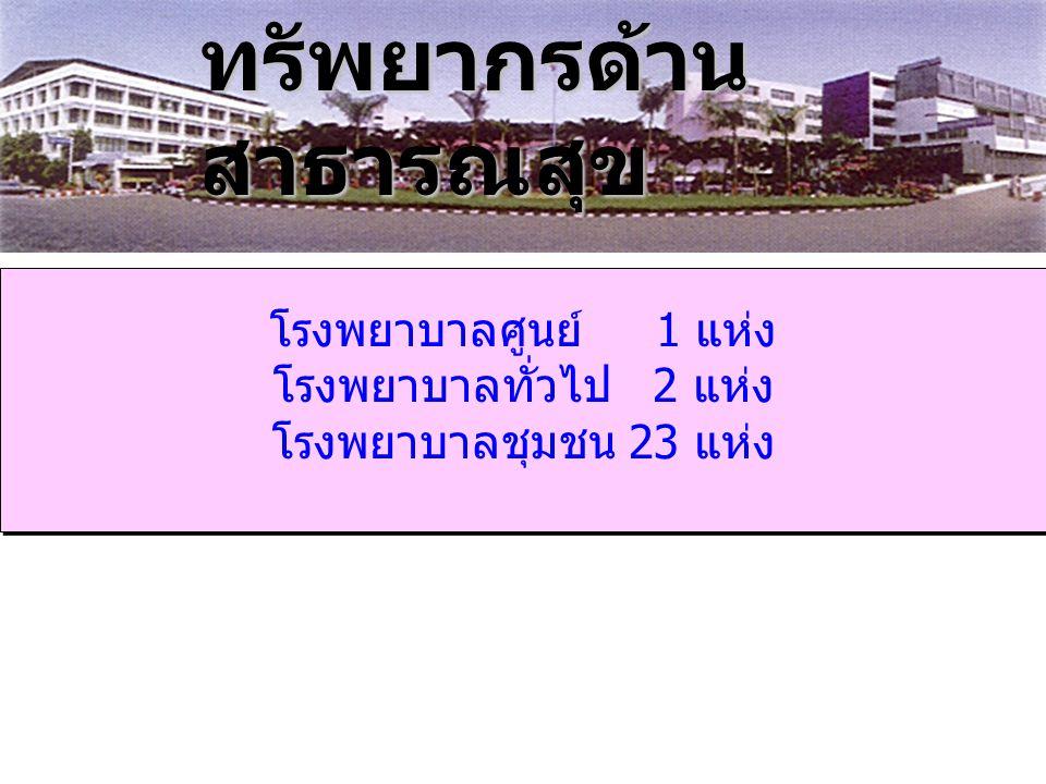 โรงพยาบาลศูนย์ 1 แห่ง โรงพยาบาลทั่วไป 2 แห่ง โรงพยาบาลชุมชน 23 แห่ง โรงพยาบาลศูนย์ 1 แห่ง โรงพยาบาลทั่วไป 2 แห่ง โรงพยาบาลชุมชน 23 แห่ง ทรัพยากรด้าน สาธารณสุข