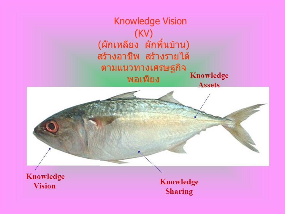 Knowledge Vision Knowledge Sharing Knowledge Assets Knowledge Vision (KV) ( ผักเหลียง ผักพื้นบ้าน ) สร้างอาชีพ สร้างรายได้ ตามแนวทางเศรษฐกิจ พอเพียง