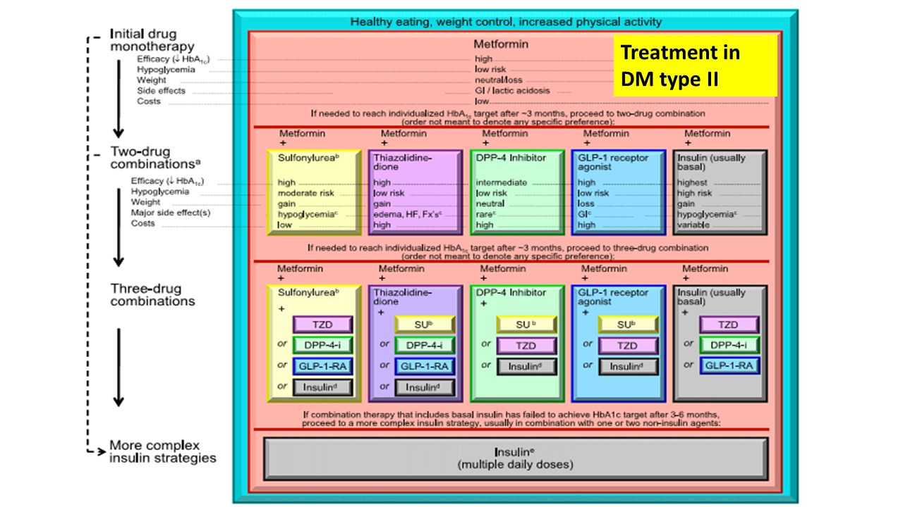 Treatment in DM type II