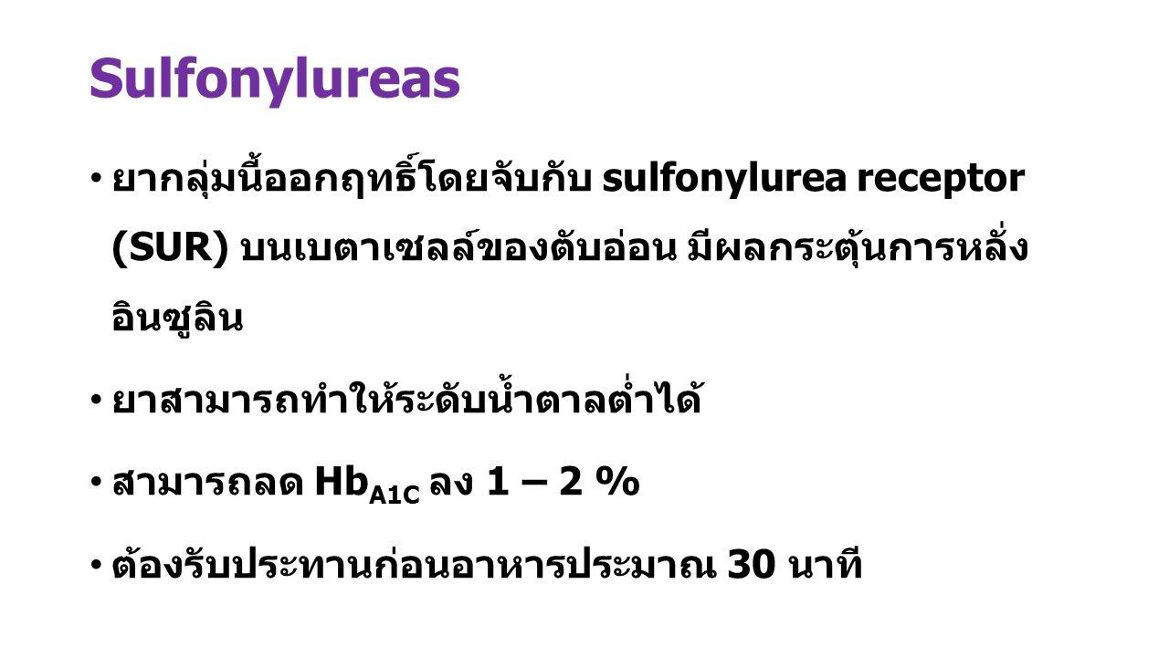 Sulfonylureas ยากลุ่มนี้ออกฤทธิ์โดยจับกับ sulfonylurea receptor (SUR) บนเบตาเซลล์ของตับอ่อน มีผลกระตุ้นการหลั่ง อินซูลิน ยาสามารถทำให้ระดับน้ำตาลต่ำได