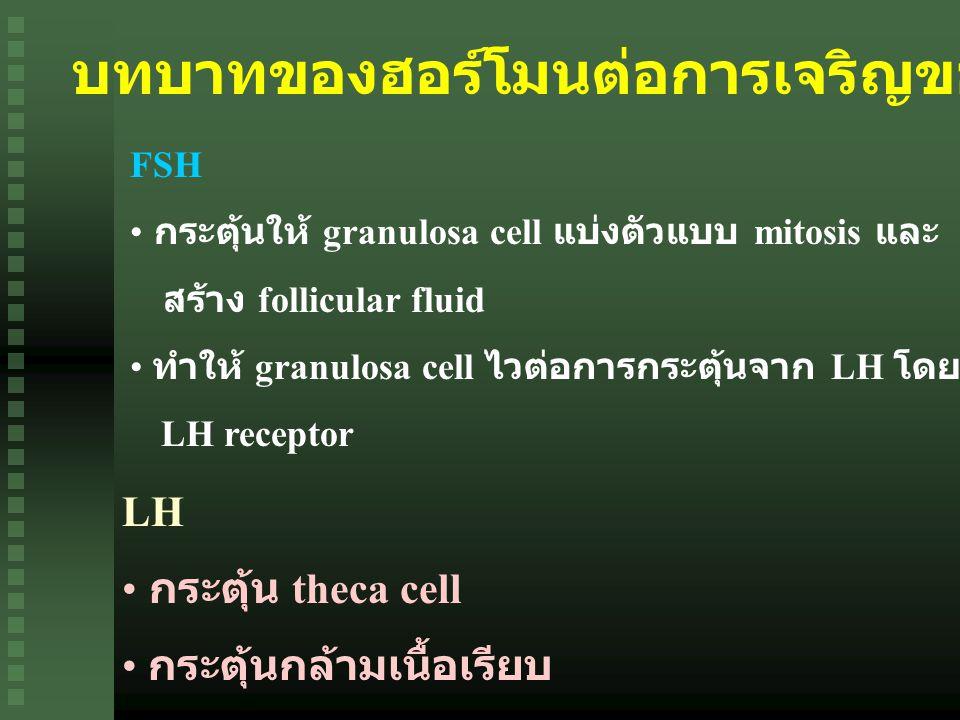 บทบาทของฮอร์โมนต่อการเจริญของไข่และการตกไข่ FSH กระตุ้นให้ granulosa cell แบ่งตัวแบบ mitosis และ สร้าง follicular fluid ทำให้ granulosa cell ไวต่อการกระตุ้นจาก LH โดยการเพิ่มจำนวน LH receptor LH กระตุ้น theca cell กระตุ้นกล้ามเนื้อเรียบ