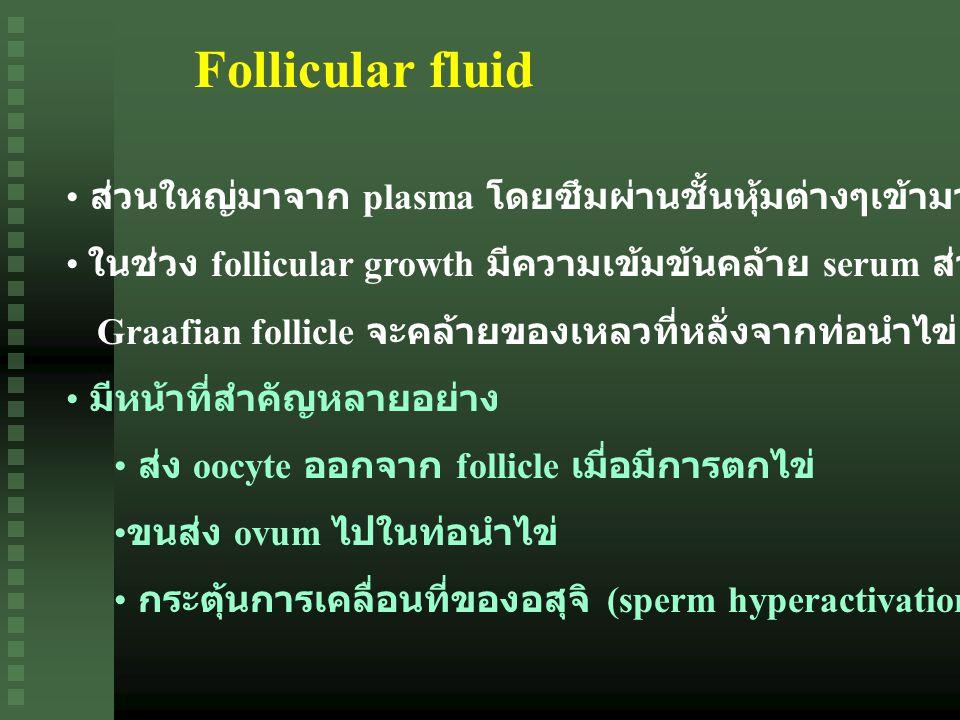 Follicular fluid ส่วนใหญ่มาจาก plasma โดยซึมผ่านชั้นหุ้มต่างๆเข้ามาสะสมที่ antrum ในช่วง follicular growth มีความเข้มข้นคล้าย serum ส่วนในช่วง Graafian follicle จะคล้ายของเหลวที่หลั่งจากท่อนำไข่ มีหน้าที่สำคัญหลายอย่าง ส่ง oocyte ออกจาก follicle เมี่อมีการตกไข่ ขนส่ง ovum ไปในท่อนำไข่ กระตุ้นการเคลื่อนที่ของอสุจิ (sperm hyperactivation)