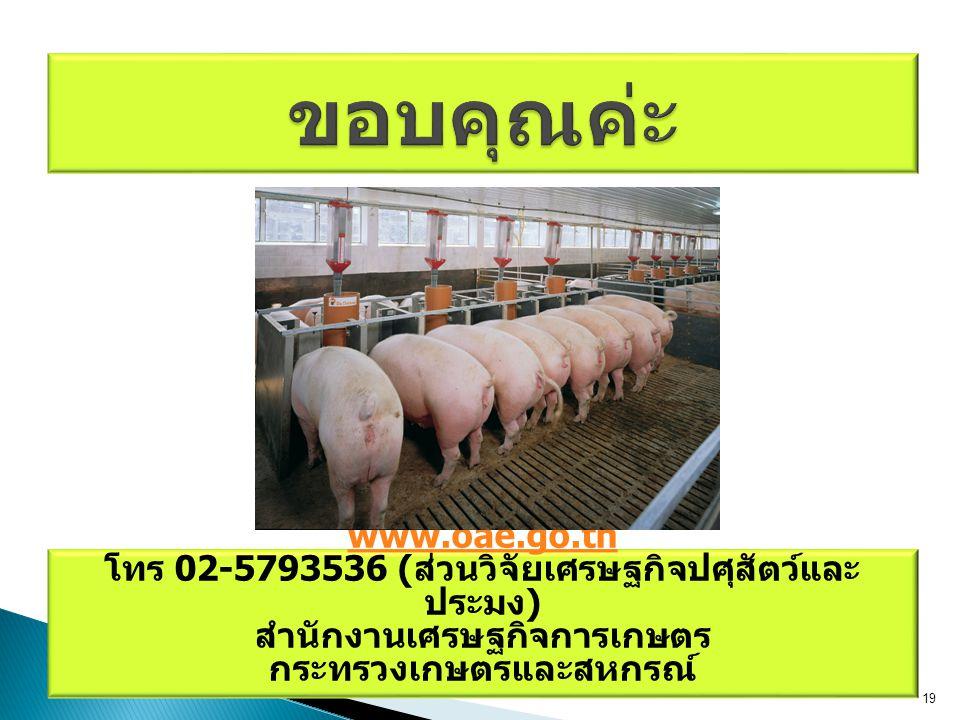 www.oae.go.th โทร 02-5793536 ( ส่วนวิจัยเศรษฐกิจปศุสัตว์และ ประมง ) สำนักงานเศรษฐกิจการเกษตร กระทรวงเกษตรและสหกรณ์ 19