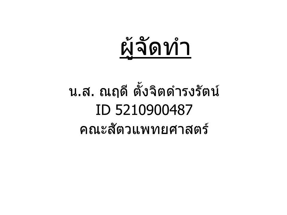 น. ส. ณฤดี ตั้งจิตดำรงรัตน์ ID 5210900487 คณะสัตวแพทยศาสตร์ ผู้จัดทำ