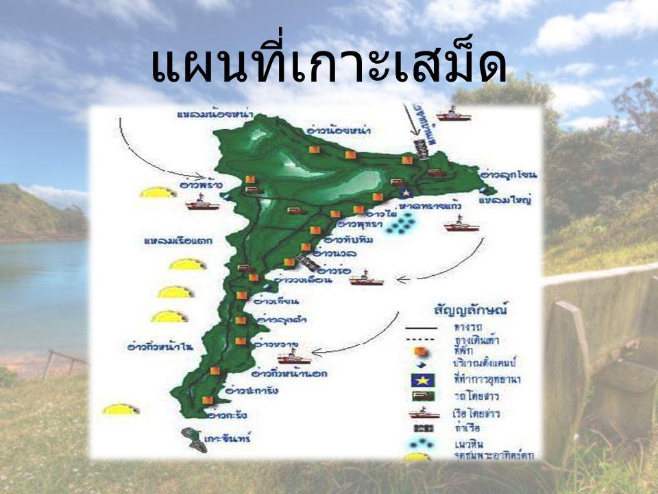 การเดินทางบนเกาะเสม็ด - สามารถนั่งเรือเร็วไปอ่าวที่ต้องการได้ - รถโดยสารบนเกาะเสม็ด ( รถเขียว ) - การเดินเท้า