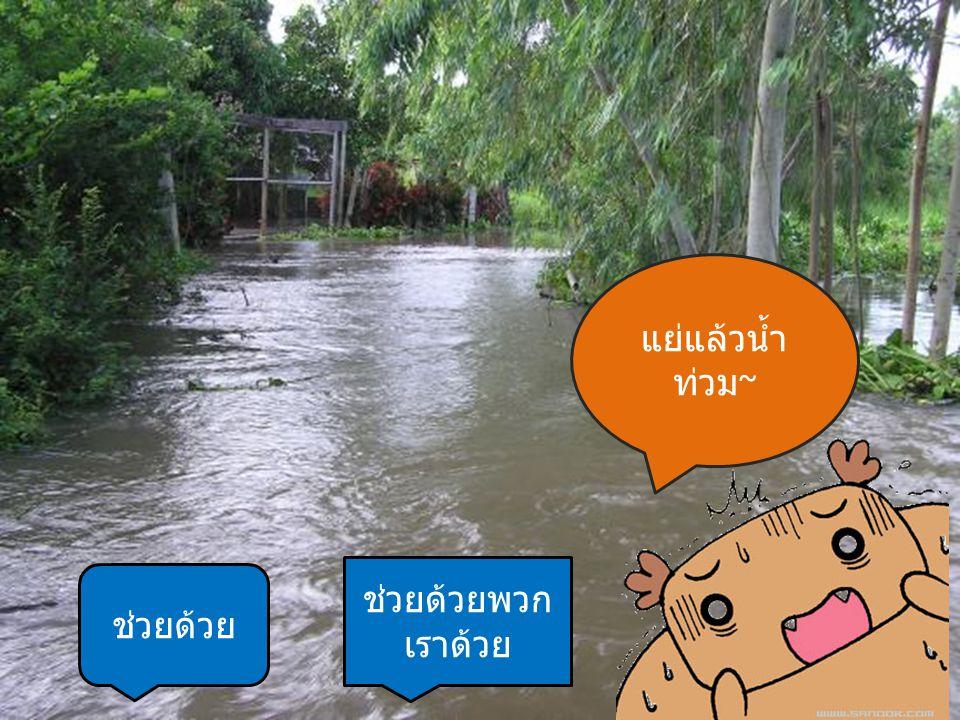 แย่แล้วน้ำ ท่วม ~ ช่วยด้วย ช่วยด้วยพวก เราด้วย