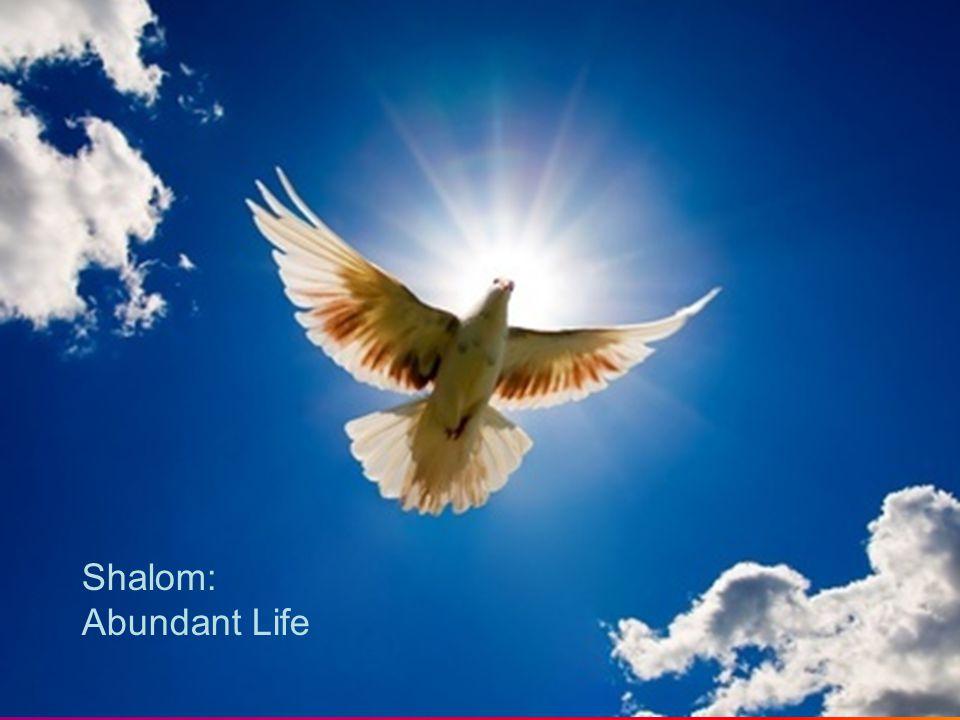 Shalom: Abundant Life