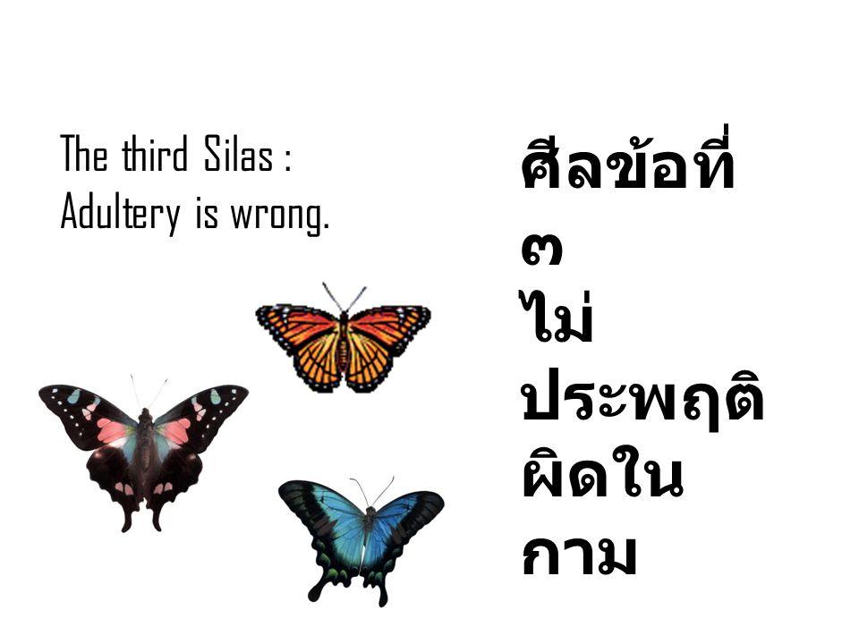 The third Silas : Adultery is wrong. ศีลข้อที่ ๓ ไม่ ประพฤติ ผิดใน กาม