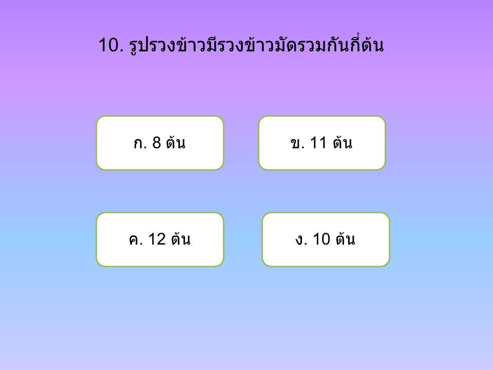 10. รูปรวงข้าวมีรวงข้าวมัดรวมกันกี่ต้น ก. 8 ต้น ค. 12 ต้นง. 10 ต้น ข. 11 ต้น