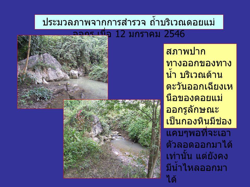 ประมวลภาพจากการสำรวจ ถ้ำบริเวณดอยแม่ ออกรู เมื่อ 12 มกราคม 2546 สภาพปาก ทางออกของทาง น้ำ บริเวณด้าน ตะวันออกเฉียงเห นือของดอยแม่ ออกรูลักษณะ เป็นกองหินมีช่อง แคบๆพอที่จะเอา ตัวลอดออกมาได้ เท่านั้น แต่ยังคง มีน้ำไหลออกมา ได้