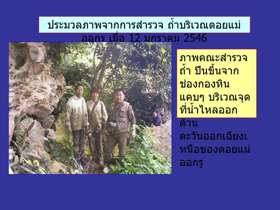 ประมวลภาพจากการสำรวจ ถ้ำบริเวณดอยแม่ ออกรู เมื่อ 12 มกราคม 2546 ภาพคณะสำรวจ ถ้ำ ปีนขึ้นจาก ช่องกองหิน แคบๆ บริเวณจุด ที่น้ำไหลออก ด้าน ตะวันออกเฉียงเ หนือของดอยแม่ ออกรู