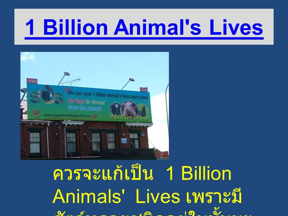 1 Billion Animal s Lives ควรจะแก้เป็น 1 Billion Animals Lives เพราะมี สัตว์หลายชนิดอยู่ในนั้นนะ