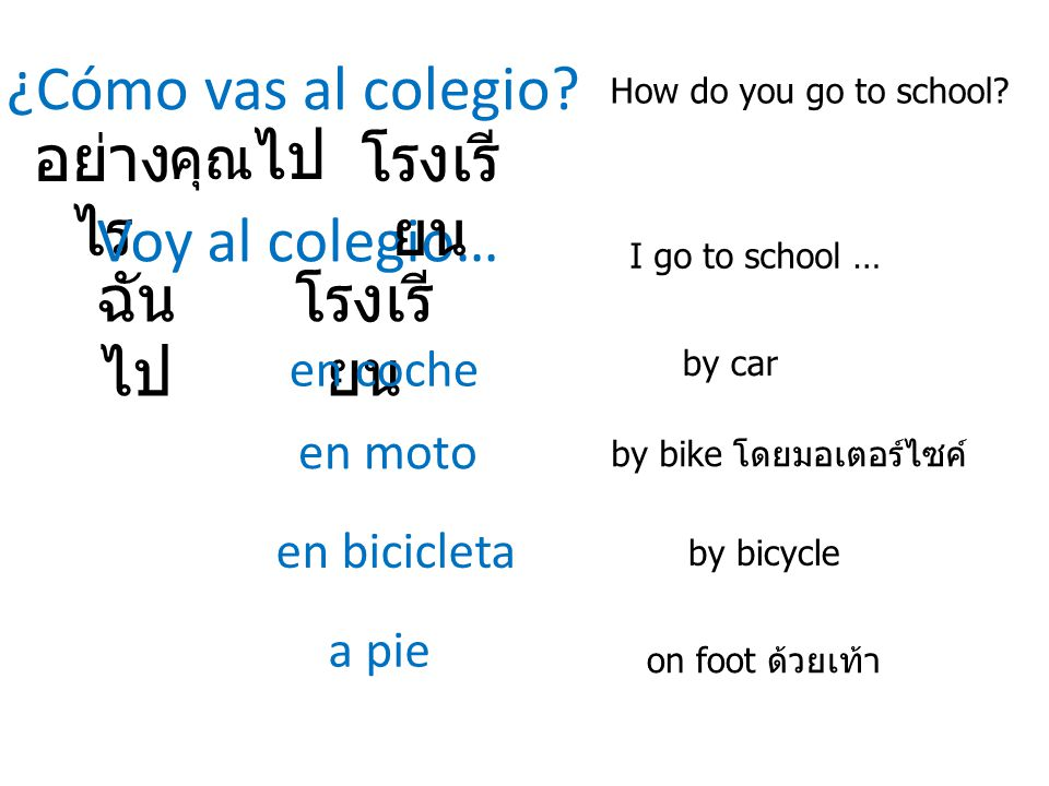 ¿Cómo vas al colegio? How do you go to school? อย่าง ไร คุณ ไป Voy al colegio… I go to school … ฉัน ไป โรงเรี ยน en coche en bicicleta a pie by car by
