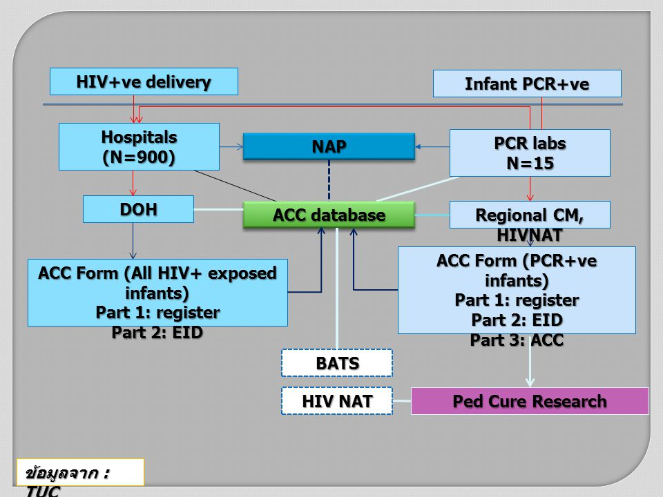 HIV+ve delivery Hospitals(N=900) DOH Ped Cure Research ACC Form (All HIV+ exposed infants) Part 1: register Part 2: EID ACC database Infant PCR+ve Regional CM, HIVNAT NAPNAP PCR labs N=15 ACC Form (PCR+ve infants) Part 1: register Part 2: EID Part 3: ACC BATS HIV NAT ข้อมูลจาก : TUC