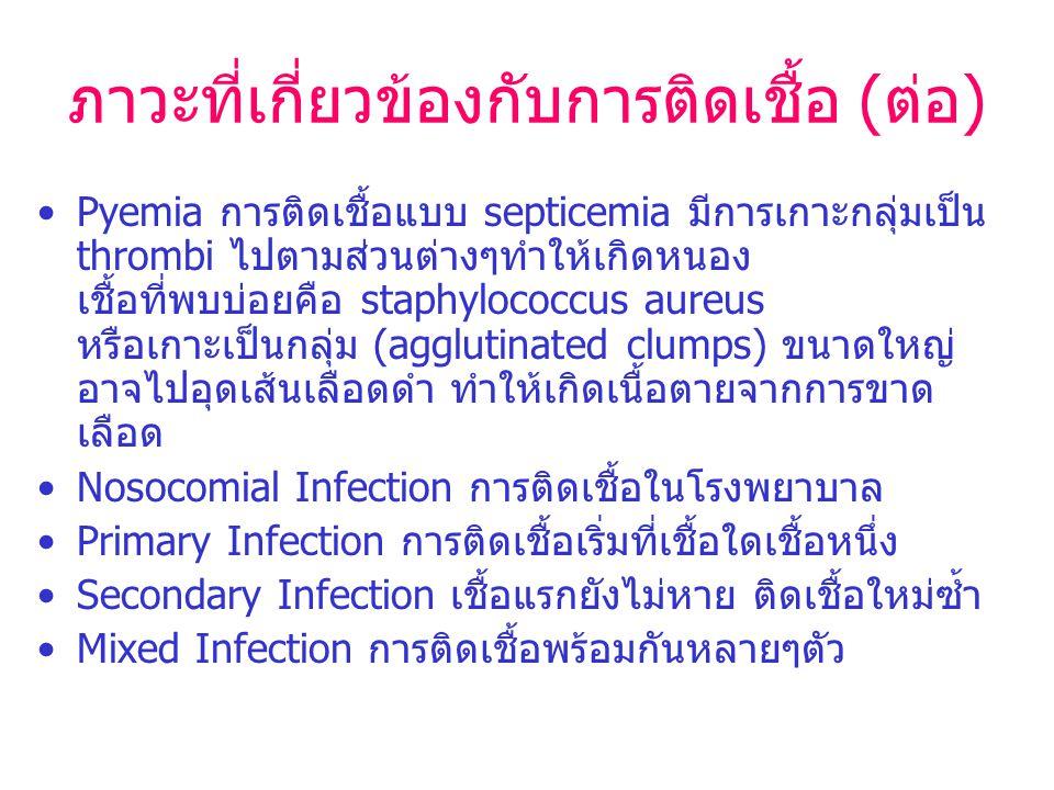ภาวะที่เกี่ยวข้องกับการติดเชื้อ (ต่อ) Pyemia การติดเชื้อแบบ septicemia มีการเกาะกลุ่มเป็น thrombi ไปตามส่วนต่างๆทำให้เกิดหนอง เชื้อที่พบบ่อยคือ staphy