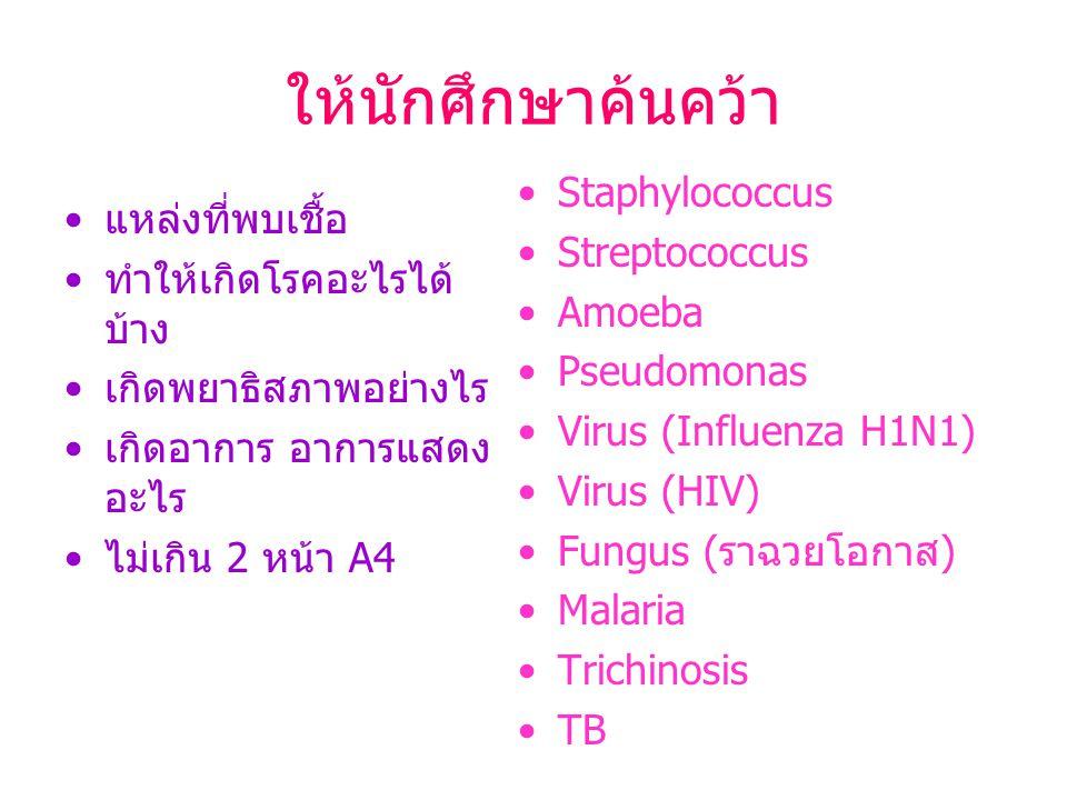 ให้นักศึกษาค้นคว้า แหล่งที่พบเชื้อ ทำให้เกิดโรคอะไรได้ บ้าง เกิดพยาธิสภาพอย่างไร เกิดอาการ อาการแสดง อะไร ไม่เกิน 2 หน้า A4 Staphylococcus Streptococc