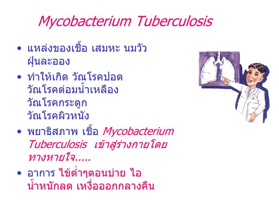 Mycobacterium Tuberculosis แหล่งของเชื้อ เสมหะ นมวัว ฝุ่นละออง ทำให้เกิด วัณโรคปอด วัณโรคต่อมน้ำเหลือง วัณโรคกระดูก วัณโรคผิวหนัง พยาธิสภาพ เชื้อ Myco