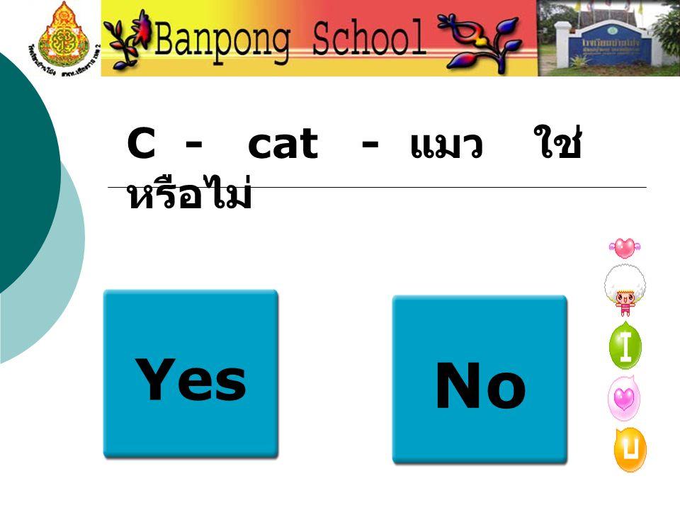 Yes No C - cat - แมว ใช่ หรือไม่