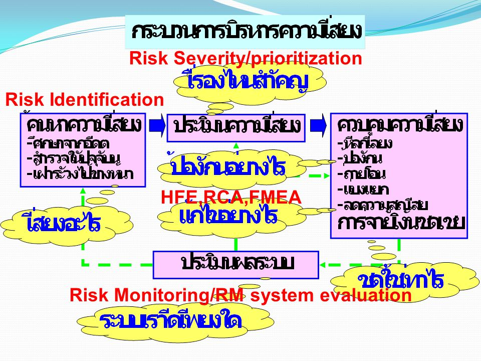 Risk Identification Risk Severity/prioritization HFE,RCA,FMEA Risk Monitoring/RM system evaluation